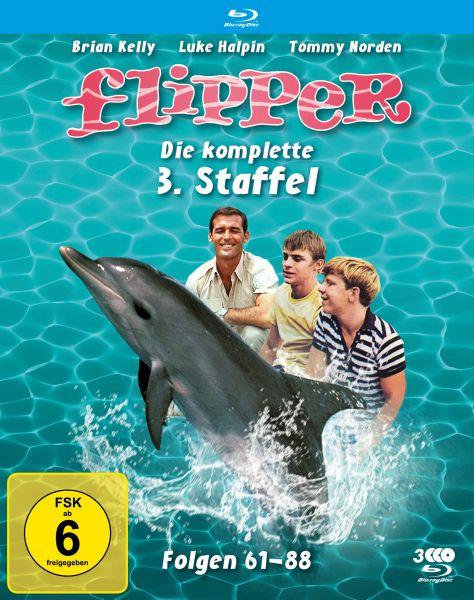 Flipper - Die komplette 3. Staffel